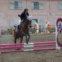 第51回千葉県馬術大会PartⅡ・県民体育大会第2部 (3)