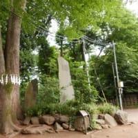 代々木公園と代々木八幡