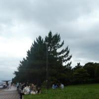 城南島に行ってきました。