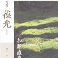 加藤直克・句集『葆光』22世紀アート