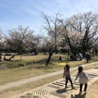 それでも桜の季節は来る