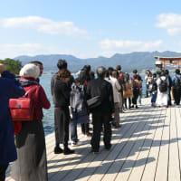 厳島神社その6     投稿者:佐渡の翼