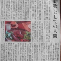 〔261〕「CWニコルさん追悼」、松本輝夫さんと矢部顕さんのことばを届けます。
