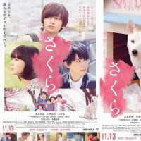 さくら (2020) 119分