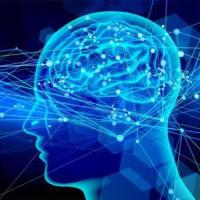 脳の正しい使い方♩ ①
