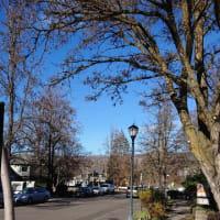 アメリカ オレゴンでのオステオパシー研修に参加しました。