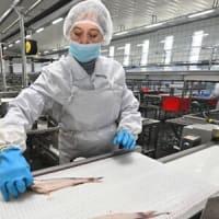 ロシアのスケソウダラ生産を開始