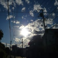 朝とは、全く逆の天気
