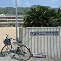 佐田岬の休日 ~33年ぶりの自転車通~