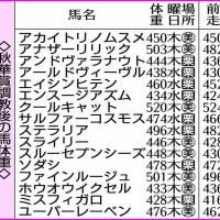 10/17 阪神・第26回 秋華賞(GⅠ)
