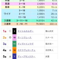 【重賞回顧】菊花賞