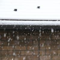 埼玉北部にも雪