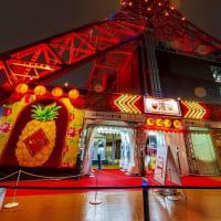 台湾祭 パイナップルライトアップ