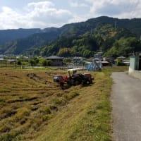 畔草刈りと畔付け、農薬まき