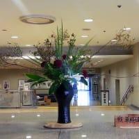 ・町田市民ホール・ロビー展示(田無ツツジ)