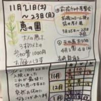 大人の教室の予定表です(担当:鈴木和可子)