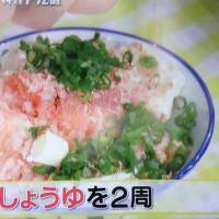 倉科カナさんがテレビで、お勧めのごはん料理を紹介していましたーおいしい猫まんまでした