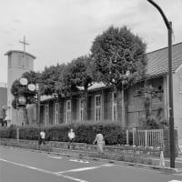 カトリック成城教会