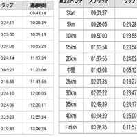 第5回さいたま国際マラソンに参加