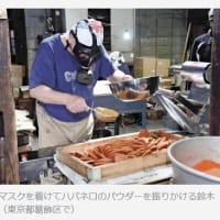 今日以降使えるダジャレ『2267』【経済】■「激辛」より辛い煎餅、仕上げはガスマスク着用