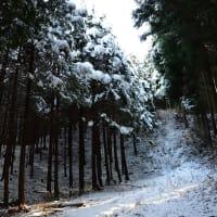 雪の秩父路を往く ~プロローグ~