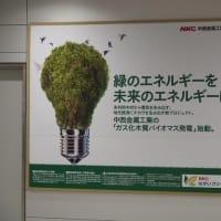 日本の竹が世界を明るくした!?