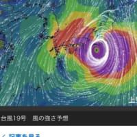 台風19号は去ったが。。。。