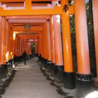 京都旅行~伏見稲荷編~