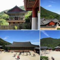 秋の日本周遊クルーズ 6