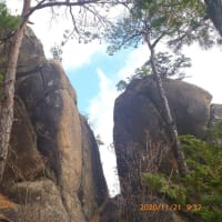 湯来町 岩渕山・感応山 岩登り登山(2)  654峰迄