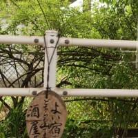 I Love 肥薩おれんじ鉄道 車窓風景
