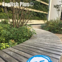 【完全予約制】 2021年9月のEnglish Plus 学校説明会のお知らせ(日本語編)