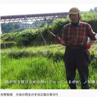 矢野智徳 大地の再生の手法②風の草刈り