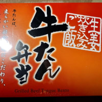 新大阪で理科ステーションで買った♪駅弁(pq・v・)+°