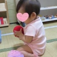 Nidoの様子(2019年9月)