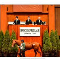 【ノーザンファーム繁殖牝馬セール2020】の「ブラックタイプ」が公開!