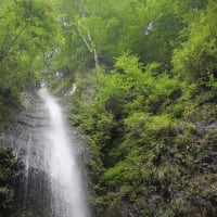 夏緑、滝迸る