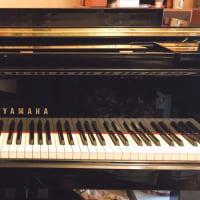 ピアノ調律&見学!
