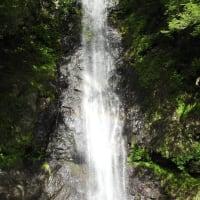 羽衣白糸の滝には、間違いなく気品ある卑弥呼さんの横顔が彫られています