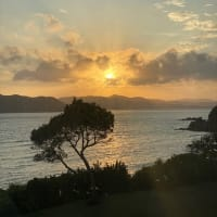 奄美大島でドローンの可能性を発見してきました。