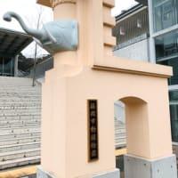 そんなカバなー(笑)でした! ~福岡市動物園♡~