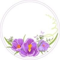 クロッカスが咲いて…