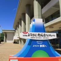 静岡鉄道は100周年記念ラッピングと新緑・・(2019年6月 日吉町駅付近 オマケはまたタピオカ店)