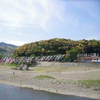 大川鯉のぼり川渡し