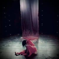 stage  photo:Sakurai Ikuya dance solo(櫻井郁也ダンス公演記録)