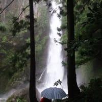 WOC登山部2020.07.08 轟・岩屋・大荒の滝