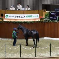 【ジェイエス・秋季繁殖馬セール2021(JS Company Autumn Broodmare Sale)】~結果概要(最高額馬写真・動画、インタビュー映像など)