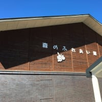 箱根の散歩道