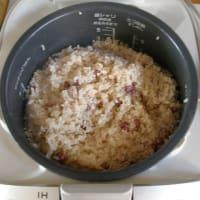発芽玄米酵素ご飯