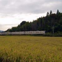 2020.10.3 中央線(中津川)